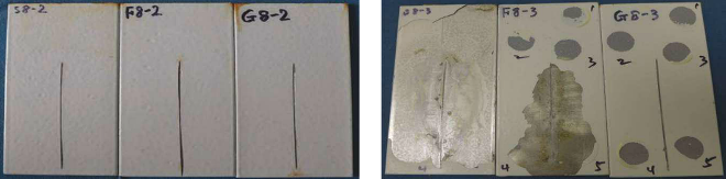 "Only one coating system experienced delamination after 16 weeks of salt fog exposure (right). Panels with the same coating system did not experience delamination after eight weeks of exposure (left). Panels marked ""S"" were cleaned with Method 1, ""F"" were cleaned with Method 2, and ""G"" were cleaned with Method 3."