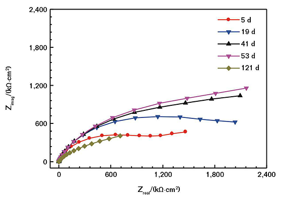 FIGURE 2 Nyquist plots of the CACC with 20 wt% of nickel powder immersed in mild SASS for different times.