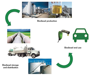FIGURE 2 Biodiesel from production through end use.