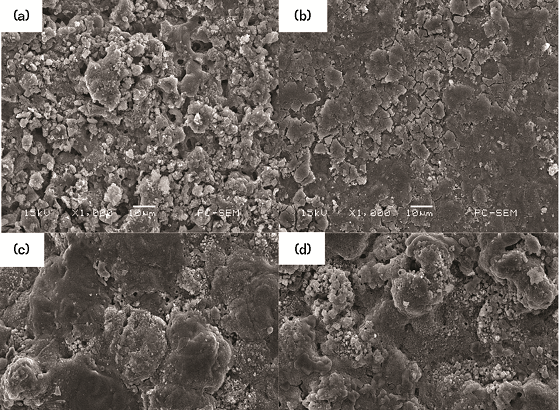 FIGURE 4 Morphologies of corrosion attack of AA7050 MAO coating in 3.5 wt% NaCl solution at different CDs: (a) 3 A/dm<sup>2</sup>, (b) 5 A/dm<sup>2</sup>, (c) 7 A/dm<sup>2</sup>, and (d) 10 A/dm<sup>2</sup> for 120 h.
